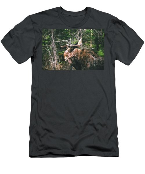 Bull Moose In Spring Men's T-Shirt (Athletic Fit)