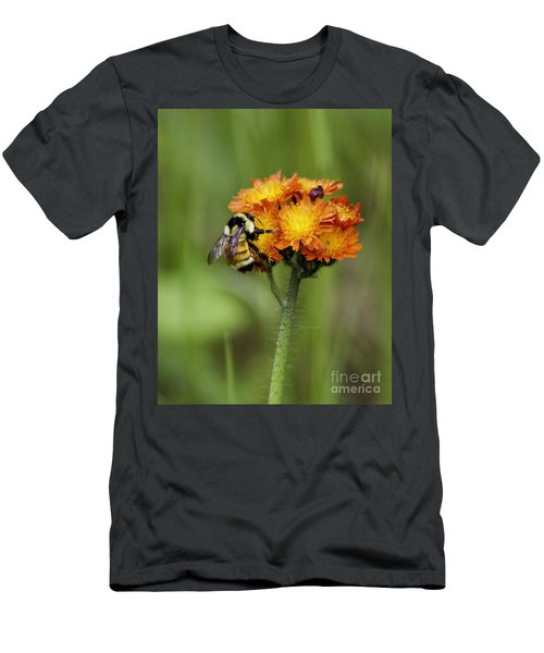 Bumble And Hawk Men's T-Shirt (Athletic Fit)