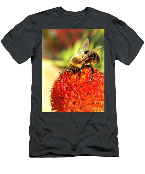 Bumblebee And Seed Globe Men's T-Shirt (Athletic Fit)