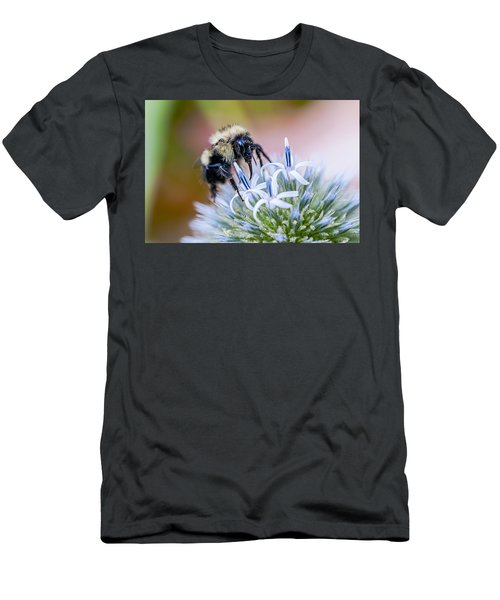 Bumblebee On Thistle Blossom Men's T-Shirt (Athletic Fit)