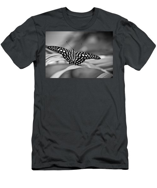 Butterfly Resting Men's T-Shirt (Athletic Fit)