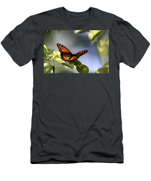Butterfly -  Soaking Up The Sun Men's T-Shirt (Athletic Fit)