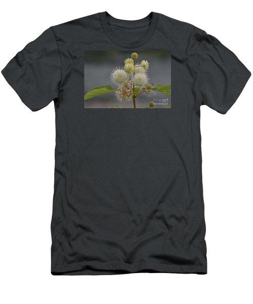 Men's T-Shirt (Slim Fit) featuring the photograph Buttonbush by Randy Bodkins