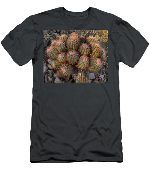 Cactus Burst Men's T-Shirt (Athletic Fit)