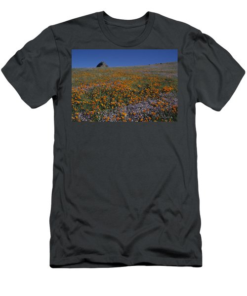 California Gold Poppies And Baby Blue Eyes Men's T-Shirt (Slim Fit) by Susan Rovira