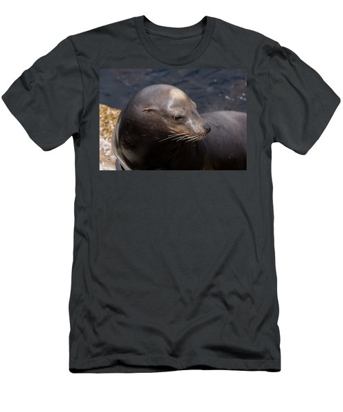 California Sea Lion Men's T-Shirt (Athletic Fit)