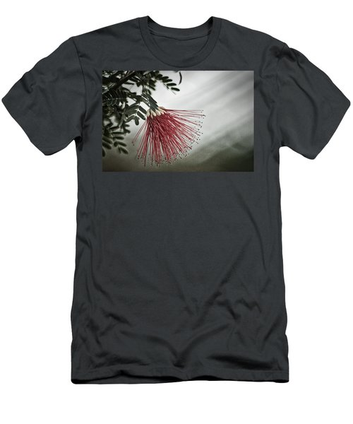 Calliandra Californica Men's T-Shirt (Athletic Fit)