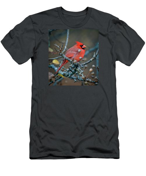 Men's T-Shirt (Slim Fit) featuring the photograph Cardinal In The Berries by Kerri Farley
