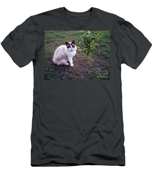 Men's T-Shirt (Slim Fit) featuring the photograph Cat 'n Orange Tree by Joseph Baril