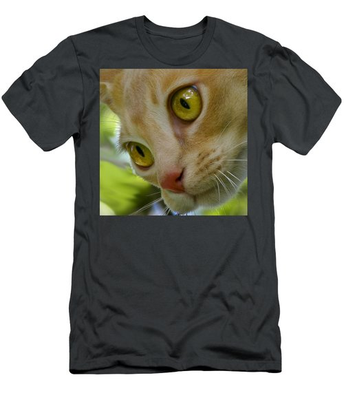 Cats Eyes Men's T-Shirt (Athletic Fit)