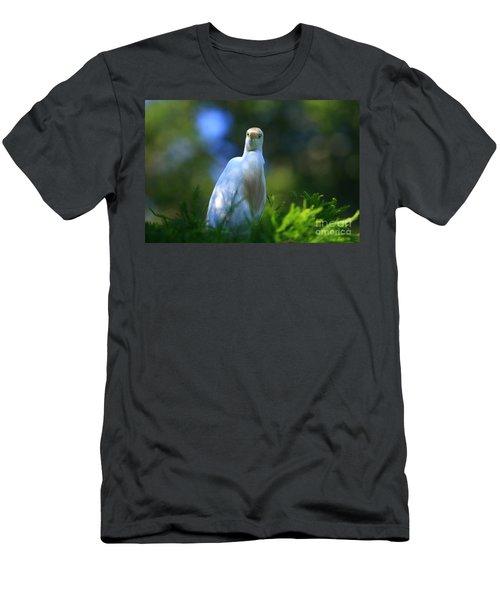 Cattle Egret Eyes Men's T-Shirt (Athletic Fit)