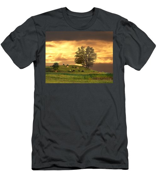 Cattle On A Hill Men's T-Shirt (Athletic Fit)