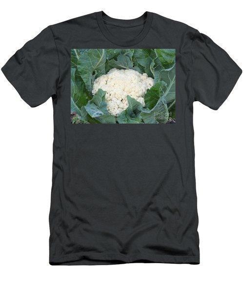 Cauliflower Men's T-Shirt (Athletic Fit)