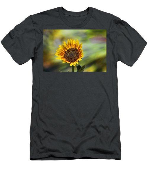 Celebrating The Sunlight Men's T-Shirt (Athletic Fit)