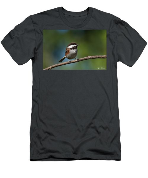 Chestnut Backed Chickadee Perched On A Branch Men's T-Shirt (Athletic Fit)