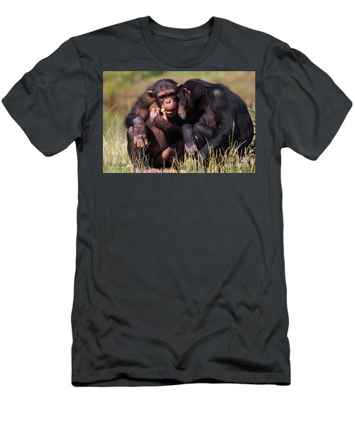 Men's T-Shirt (Slim Fit) featuring the photograph Chimpanzees Eating A Carrot by Nick  Biemans