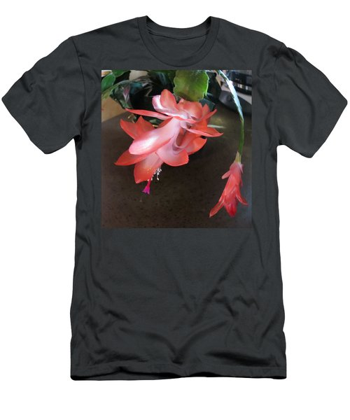 Christmas Cactus Bloom Men's T-Shirt (Slim Fit)