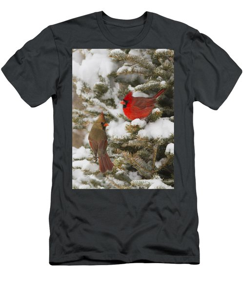 Christmas Card With Cardinals Men's T-Shirt (Athletic Fit)