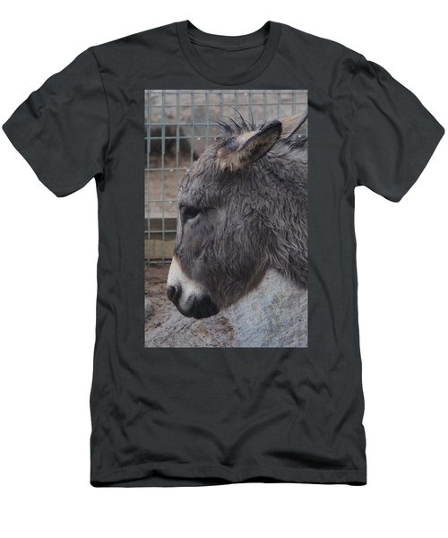 Christmas Donkey Men's T-Shirt (Athletic Fit)