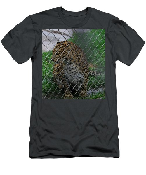 Christmas Leopard I Men's T-Shirt (Athletic Fit)