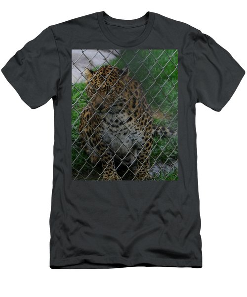 Christmas Leopard II Men's T-Shirt (Athletic Fit)