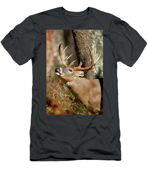 Close-up Of A White-tailed Deer Curling Men's T-Shirt (Athletic Fit)