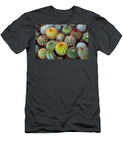 Close-up Of Multi-colored Cacti Men's T-Shirt (Athletic Fit)
