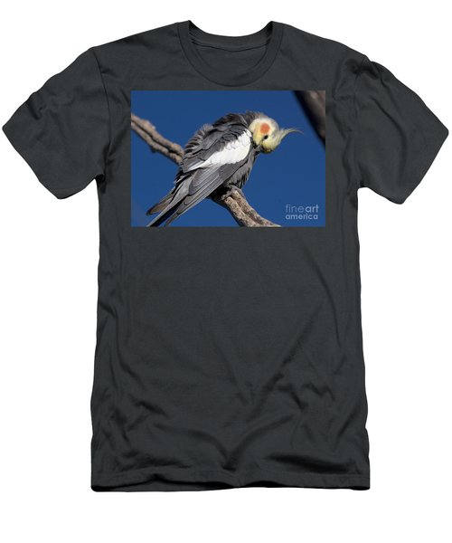 Cockatiel - Canberra - Australia Men's T-Shirt (Athletic Fit)