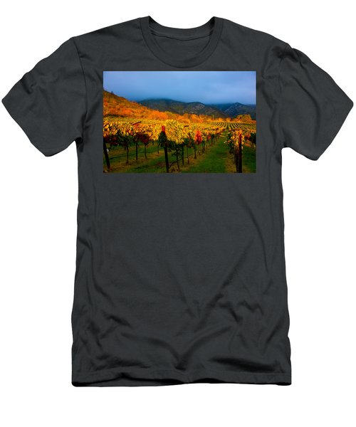 Colibri Morning Men's T-Shirt (Athletic Fit)