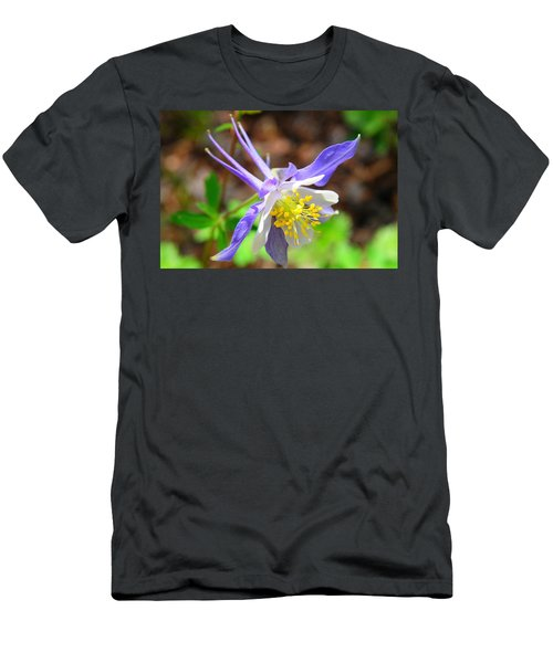 Colorado Blue Columbine Flower Men's T-Shirt (Athletic Fit)