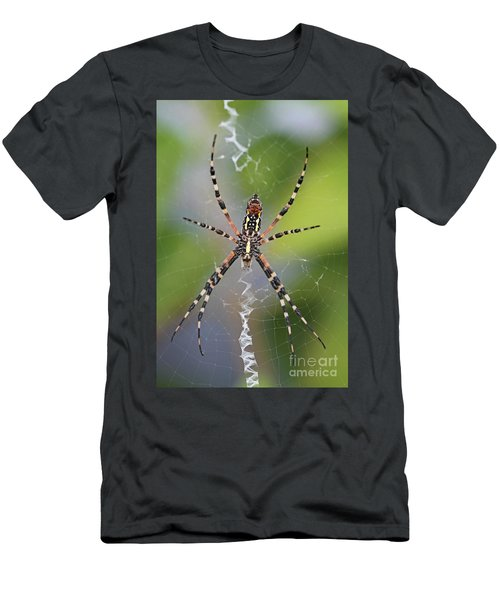 Colorful Spider Men's T-Shirt (Athletic Fit)