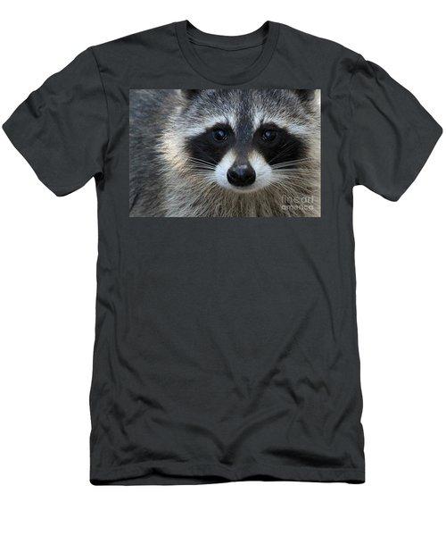 Common Raccoon Men's T-Shirt (Athletic Fit)
