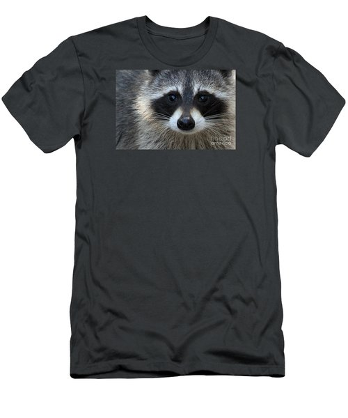 Common Raccoon Men's T-Shirt (Athletic Fit)