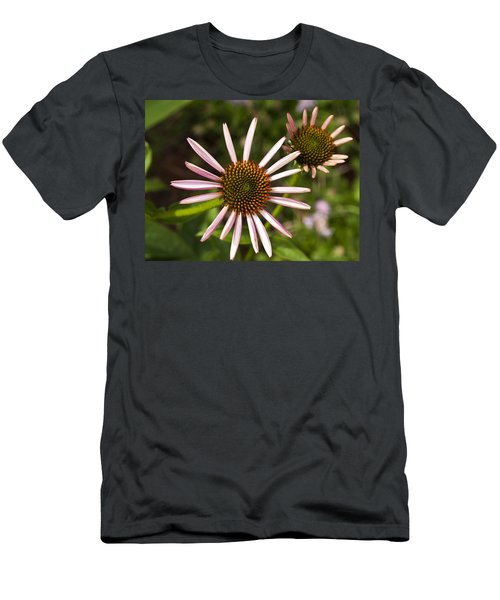 Cone Flower - 1 Men's T-Shirt (Athletic Fit)