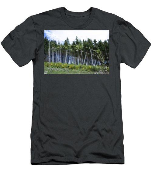 Coniferous Forest Men's T-Shirt (Athletic Fit)