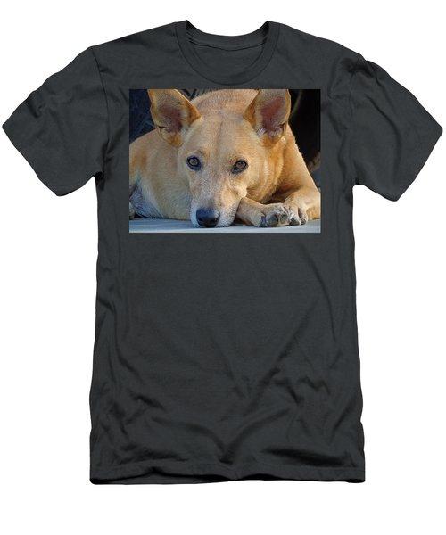 Cookie Chillin'  Men's T-Shirt (Athletic Fit)