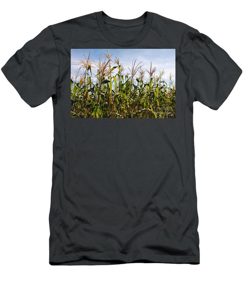 Corn Production Men's T-Shirt (Athletic Fit)