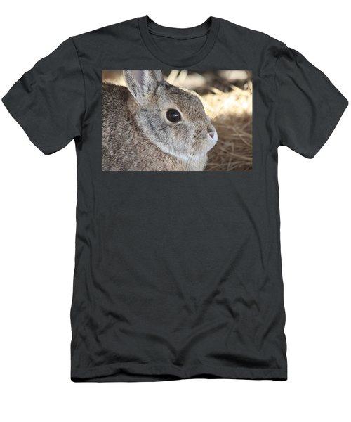 Cottontail Close-up Men's T-Shirt (Athletic Fit)