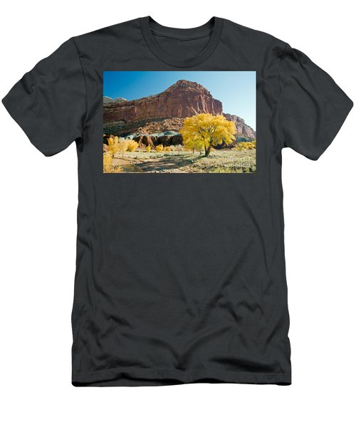Cottonwoods In Fall The Castlecapitol Reef National Park Men's T-Shirt (Athletic Fit)