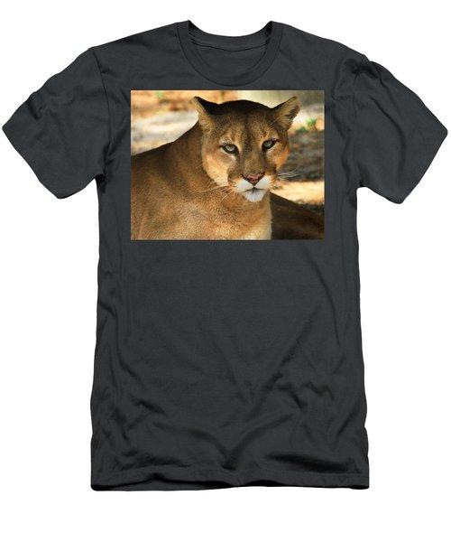 Cougar II Men's T-Shirt (Athletic Fit)