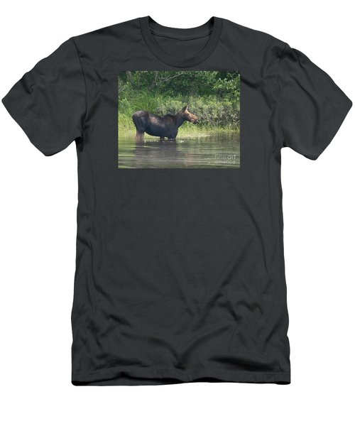 Cow Moose Breakfast Men's T-Shirt (Slim Fit)
