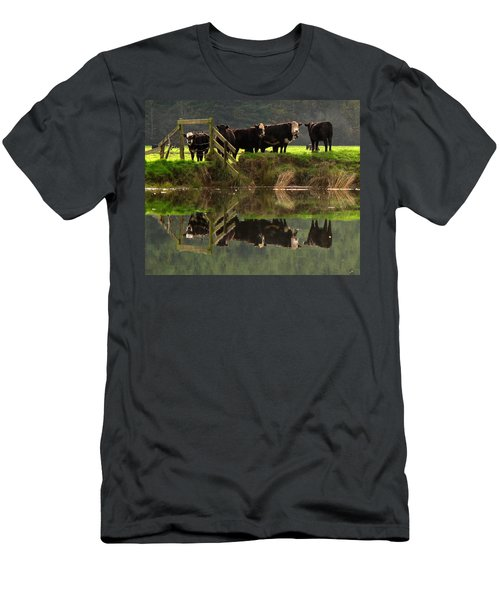 Cow Reflections Men's T-Shirt (Athletic Fit)