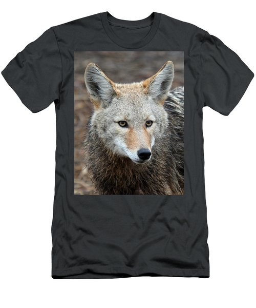 Men's T-Shirt (Slim Fit) featuring the photograph Coyote by Athena Mckinzie