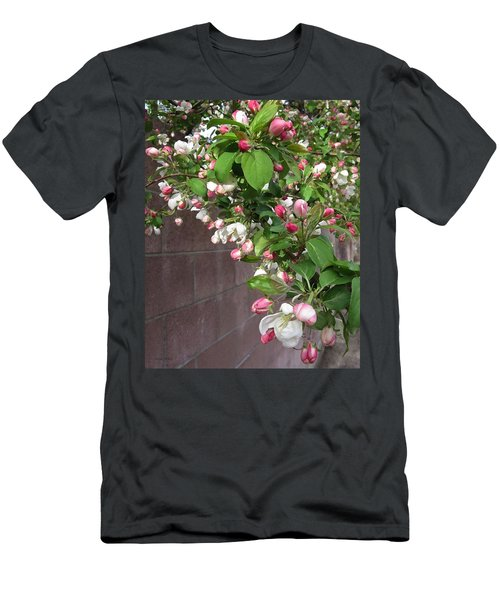Crabapple Blossoms And Wall Men's T-Shirt (Slim Fit) by Donald S Hall