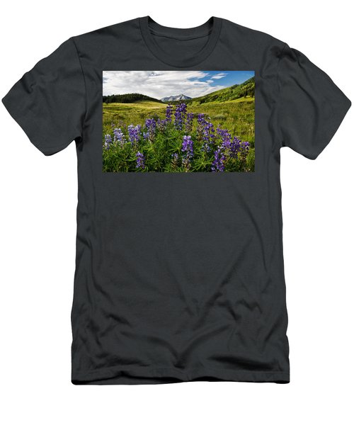 Crested Butte Lupines Men's T-Shirt (Athletic Fit)