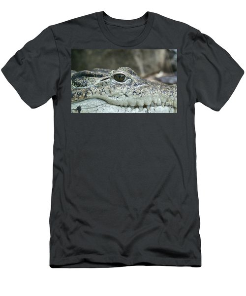 Men's T-Shirt (Slim Fit) featuring the photograph Crocodile Animal Eye Alligator Reptile Hunter by Paul Fearn