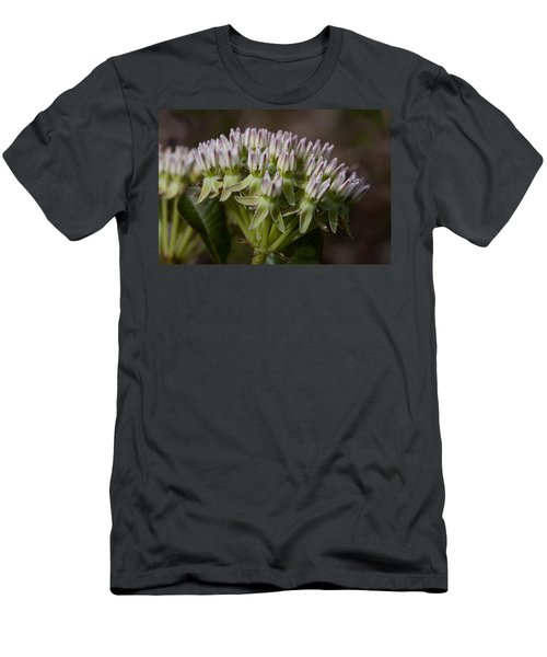 Men's T-Shirt (Slim Fit) featuring the photograph Curtiss' Milkweed #3 by Paul Rebmann