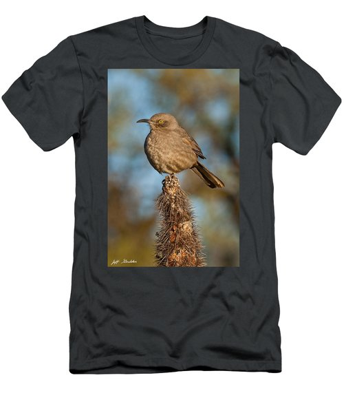 Curve-billed Thrasher On A Cactus Men's T-Shirt (Athletic Fit)