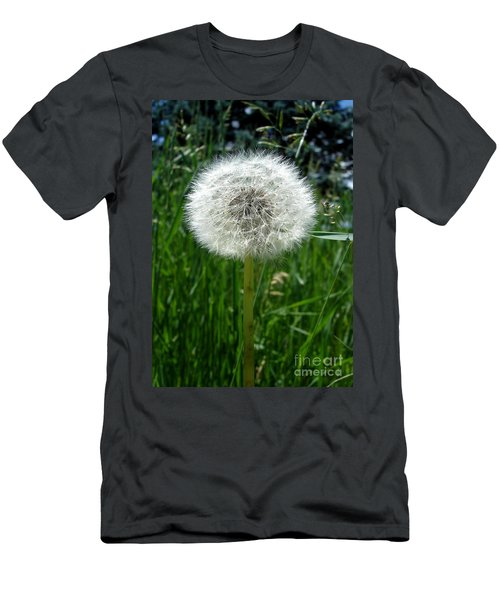 Dandelion Fluff Men's T-Shirt (Athletic Fit)