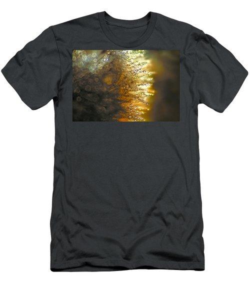 Dandelion Shine Men's T-Shirt (Athletic Fit)
